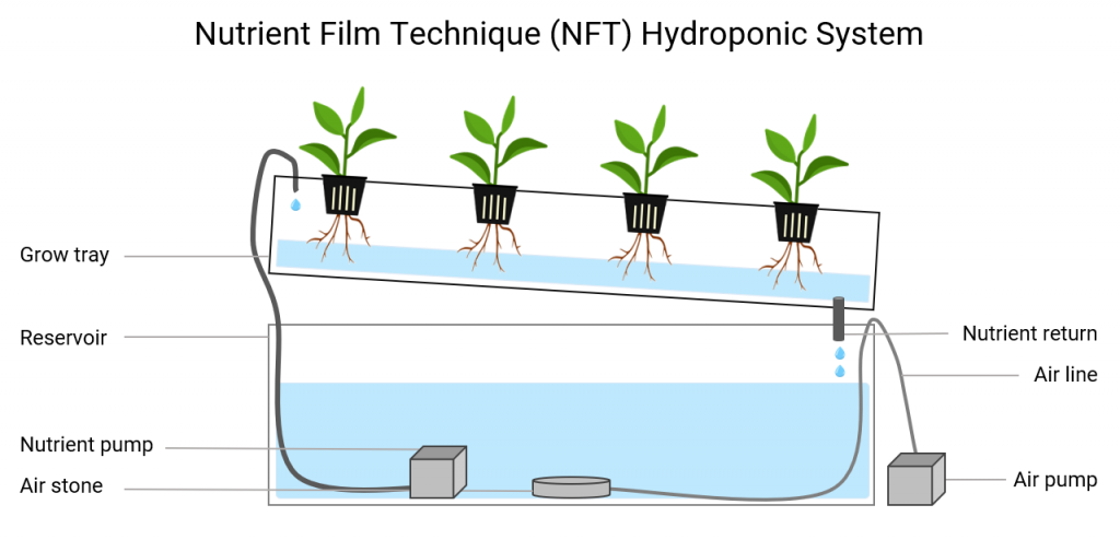 NFT hydroponic systems