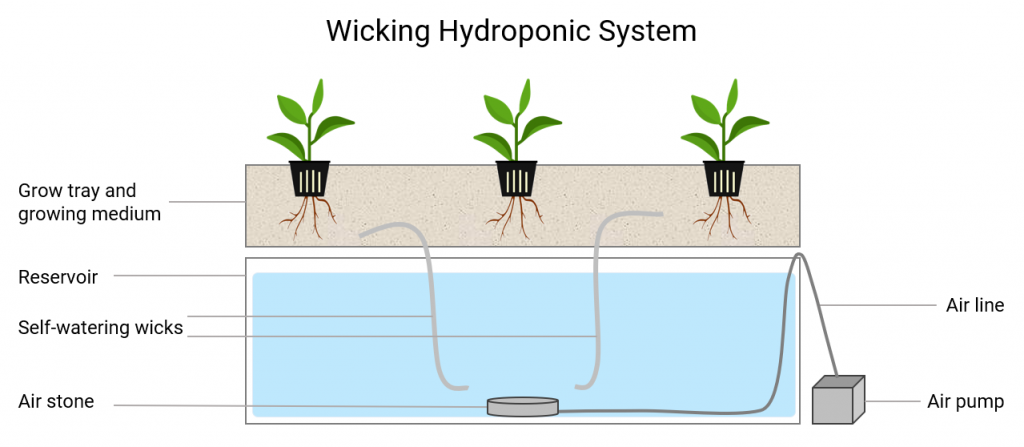 wicking hydroponic system